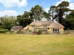 Thumbnail for sale in Pidney, Hazelbury Bryan, Sturminster Newton