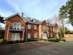 Thumbnail to rent in Damson Way, Carshalton
