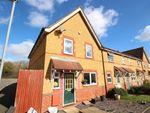 Thumbnail to rent in Romany Court, Hemel Hempstead