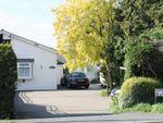 Thumbnail to rent in Lynn Road, Setchey, King's Lynn