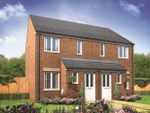 Thumbnail for sale in Plot 37 Alnwick, Hampton Gardens, Hampton, Peterborough