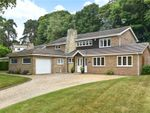 Thumbnail for sale in Paddock Close, Camberley, Surrey