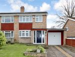 Thumbnail for sale in Pine Close, North Baddesley, Southampton, Hampshire