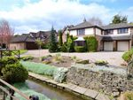 Thumbnail for sale in Willow View, Cottingham, East Riding Of Yorkshire