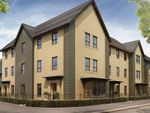 "Thumbnail to rent in ""Hornsea"" at Bearscroft Lane, London Road, Godmanchester, Huntingdon"