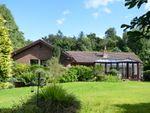 Thumbnail for sale in Eagle Drive, Longridge, Berwick Upon Tweed, Northumberland