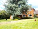 Thumbnail for sale in Hall Lane, Ipswich