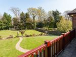 Thumbnail for sale in Broad Oak, Brenchley, Tonbridge