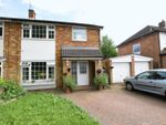Thumbnail for sale in Fir Tree Close, Hemel Hempstead