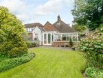 Thumbnail for sale in Moat Road, East Grinstead, West Sussex