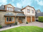 Thumbnail for sale in Bramble Close, Wickersley, Rotherham
