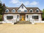 Thumbnail for sale in Stapleford Road, Stapleford Abbotts, Romford, Essex