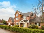 Thumbnail to rent in Hampstead Drive, Weston, Crewe