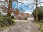 Thumbnail for sale in Pine Drive, Wokingham