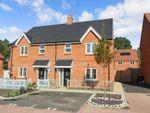 Thumbnail to rent in Delamere Gardens, Fair Oak, Eastleigh