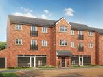 "Thumbnail to rent in ""The Aycliffe"" at Staynor Link, Selby"