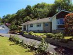 Thumbnail for sale in Milltown, Barnstaple