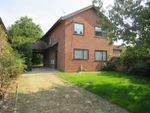 Thumbnail to rent in Mulberry Close, Mildenhall, Bury St. Edmunds