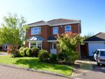 Thumbnail for sale in Harrison Close, Emersons Green, Bristol