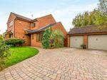 Thumbnail for sale in Tanfield Lane, Abington, Northampton