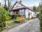 Thumbnail to rent in Clews Lane, Woking