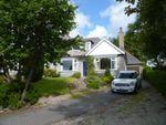 Thumbnail to rent in North Deeside Road, Peterculter