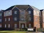 Thumbnail to rent in Wedderburn Avenue, Beggarwood, Basingstoke