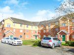 Thumbnail to rent in Plomer Avenue, Hoddesdon