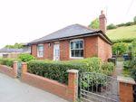 Thumbnail to rent in Llwyn, Watergate Street, Llanfair Caereinion, Welshpool, Powys
