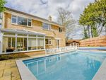 Thumbnail for sale in Scotts Close, Ware, Hertfordshire
