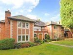 Thumbnail to rent in Prince Albert Drive, Ascot, Berkshire