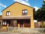 Thumbnail to rent in Celandine Avenue, Locks Heath, Southampton