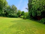 Thumbnail to rent in Montacute Road, Lewes, East Sussex