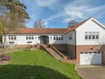 Thumbnail for sale in Thorp Avenue, Morpeth