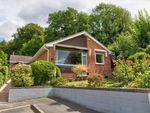 Thumbnail to rent in Horse Lane Orchard, Ledbury