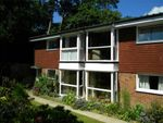 Thumbnail to rent in Pinewoods, Bexhill On Sea