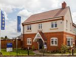 """Thumbnail to rent in """"Darley"""" at Milldale Road, Farnsfield, Newark"""