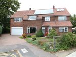 Thumbnail for sale in Endsleigh Court, Lexden, Colchester