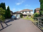 Thumbnail to rent in Plainwood Close, Chichester