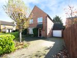 Thumbnail to rent in Wickfield Ash, Chelmsford, Essex
