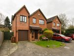 Thumbnail for sale in Hawkins Close, Chatham