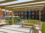 Thumbnail to rent in Pinewood Gardens, Southborough, Tunbridge Wells