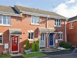 Thumbnail to rent in Foxtail Way, Hednesford, Cannock