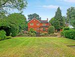 Thumbnail to rent in Fernhill Lane, Hook Heath, Woking