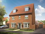 """Thumbnail to rent in """"The Newton"""" at Hollow Lane, Broomfield, Chelmsford"""