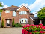 Thumbnail for sale in Holtye Road, East Grinstead