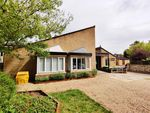 Thumbnail to rent in Somerleyton Street, Norwich
