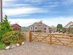 Thumbnail to rent in Holding, Woodside, Burrelton