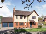 Thumbnail to rent in Webbs Close, Combs, Stowmarket