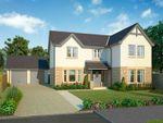 Thumbnail to rent in The Morton, Calder Street, Coatbridge, North Lanarkshire